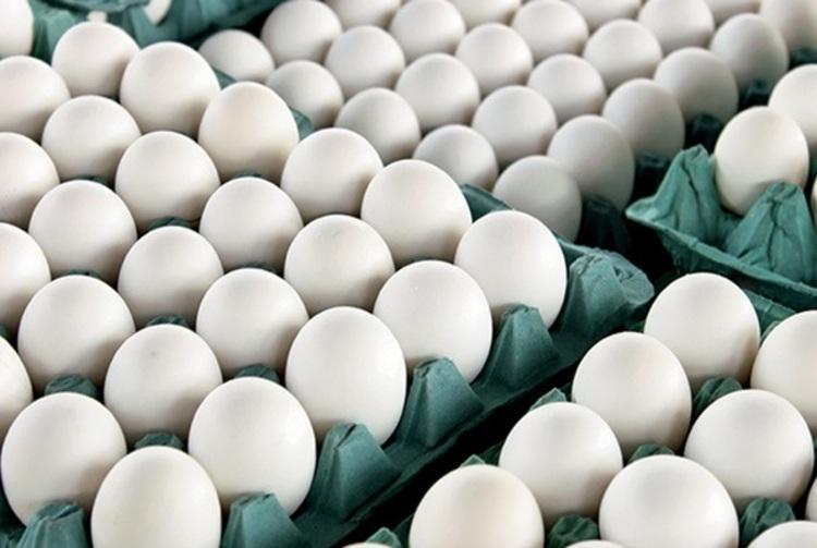 تخم مرغ به شانه ای50 هزار تومان هم می رسد