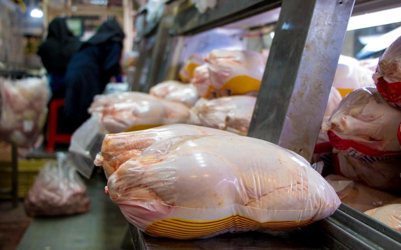 قیمت مرغ به 19.5 هزار تومان رسید