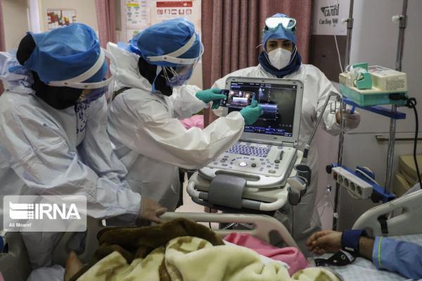 خبرنگاران 111 بیمار کرونایی در بیمارستان ها قم بستری هستند