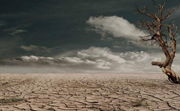 خاورمیانه درگیر با خشن ترین موج گرمایی تاریخ